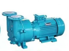四川2BVA水环真空泵